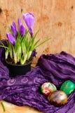 Da Páscoa vida ainda com ovos e açafrão coloridos das flores Imagens de Stock Royalty Free