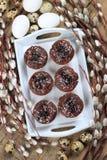 Da Páscoa vida ainda com queques do chocolate Imagem de Stock Royalty Free