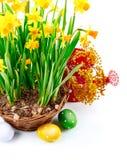 Da Páscoa vida ainda do ovo e da mola Fotografia de Stock Royalty Free