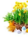 Da Páscoa vida ainda do ovo e da mola Fotos de Stock Royalty Free