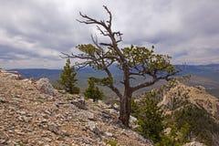 Da parte superior da montanha do coração Fotografia de Stock Royalty Free