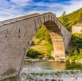 da ponte sostenuto da maiale della unico portata fotografie stock libere da diritti