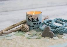 Da praia vida marítima ainda imagens de stock