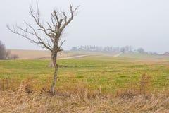 Da qualche parte nello Iowa Fotografie Stock Libere da Diritti
