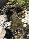 Da rocha da cachoeira da fonte da lagoa musgo sintético fora Imagem de Stock Royalty Free