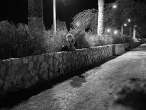 Da solo alla notte Immagini Stock Libere da Diritti