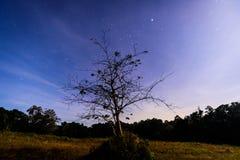 Da solo con il cielo Fotografie Stock Libere da Diritti