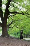 Da solo donna sotto un grande albero del fiore immagini stock