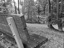 Da solo in parco fotografia stock