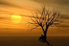 Da solo sotto l'albero al tramonto Immagini Stock