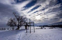 Da solo vicino alla neve del fait Immagine Stock Libera da Diritti
