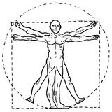 Da Vinci human body sketch. Doodle style Da Vinci human body in motion illustration with circle and square in vector format Stock Photos