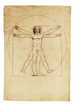 Da Vinci's Vitruvian Man. Photo of the Vitruvian Man by Leonardo Da Vinci from 1492 royalty free stock photos