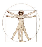 Da Vinci's Vitruvian Man. Isolated on white stock photography