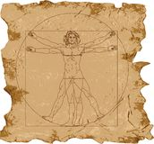 Da_vinci_vector Stock Photography