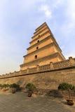 Da-Yan torn arkivbild