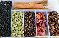 Daani indien de boîte-masala d'épice Photos libres de droits