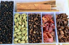 Daani indio de la caja-masala de la especia Fotos de archivo libres de regalías