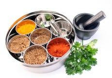 dabba pudełkowy masala indyjska przyprawy Zdjęcia Stock