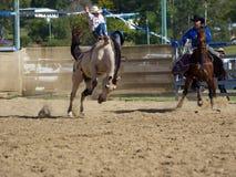 Daboro rodeo Zdjęcia Royalty Free