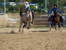 Daboro Rodeo Royalty Free Stock Photos