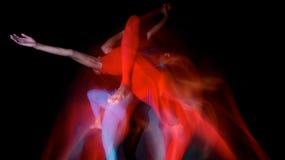 Dacers rosso/blu Fotografia Stock Libera da Diritti