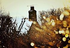 Dachów wierzchołki Fotografia Royalty Free