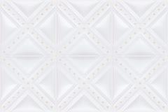 Dachówkowa skóry płytka Zdjęcie Royalty Free