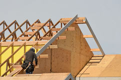Dach-Blatt Stockbilder