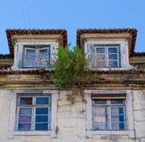 Dach des geworfenen Hauses Lizenzfreie Stockfotografie
