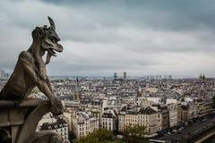 Dach des Notre-Dame de Paris Stockbild