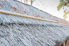 Dach des Schilfs Stockfotografie