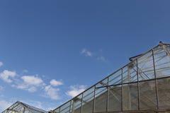 dach glasshouse lub szklarnia z jasnym niebieskim niebem w dniu Zdjęcia Royalty Free