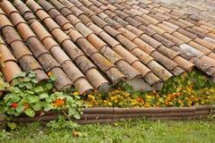 Dach i kwiaty Obrazy Stock
