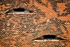 Dach mit Augen Stockbild