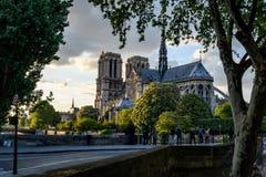 Dach Notre Dame Paris mit dem Fluss die Seine im Sonnenuntergang lizenzfreies stockbild
