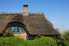 dach pokrywać strzechą Obraz Royalty Free