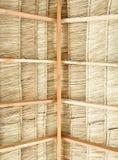 dach pokrywać strzechą Fotografia Stock