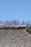 dach pokrywać strzechą Zdjęcie Stock