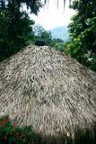 dach pokrywać strzechą Zdjęcie Royalty Free