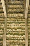 dach thathed Fotografia Stock