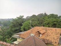 Dach und Baum Stockfoto