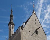 Dach von Tallinn-` s Rathaus lizenzfreie stockbilder
