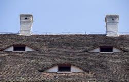 Dachaugen Stockbild