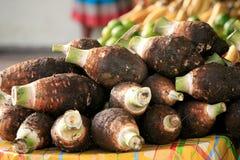 Dachine ou taro, marché de Cayenne, Guyane française française images libres de droits