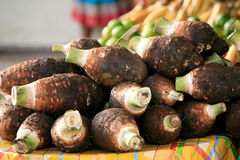 Dachine or Taro, Cayenne Market, French Guiana Royalty Free Stock Images
