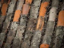 Dachowa Tekstura Fotografia Stock