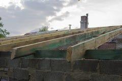 Dachowi flisacy obrazy stock