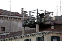 Dachowy ogród Obrazy Royalty Free