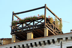 Dachowy ogród Zdjęcie Royalty Free
